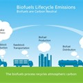 Renewable Fuels Guide launch (23 March 2020)